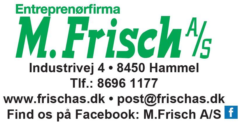 M. Frisch
